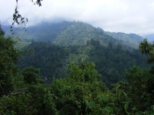 Rumbo a Volcán de Tacaná CONANP